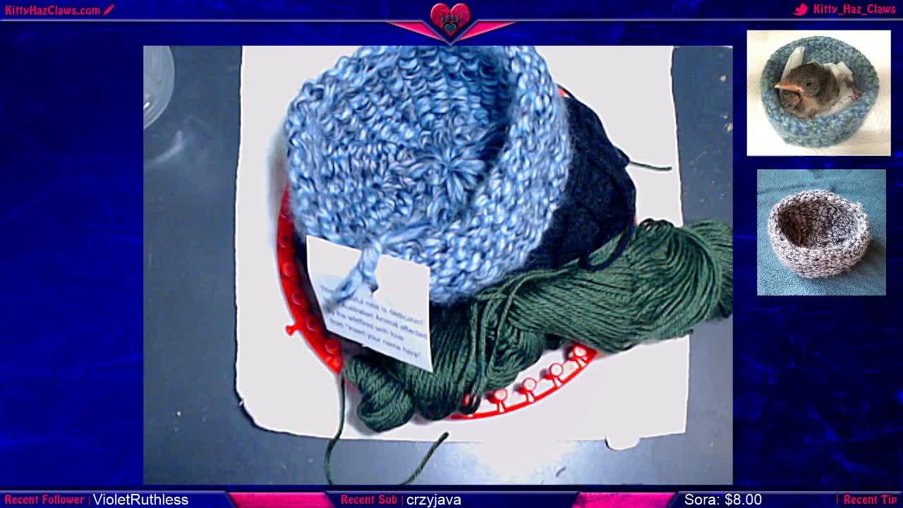Knitting for Australian Animals
