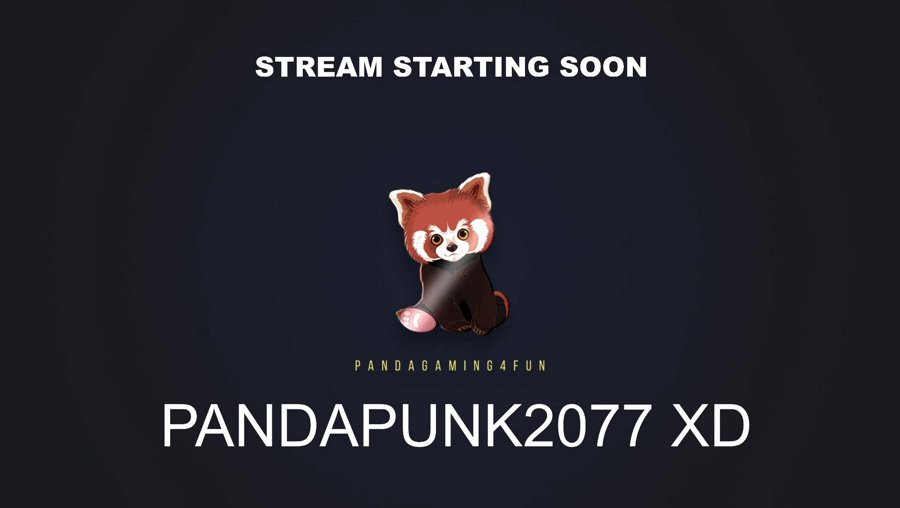 Positivity![PC]PandaPunk 2077 Corpo Part 7 Hard Thankyou Friends for all you do ❤